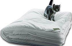 Гипоаллергенные одеяла. Как выбрать одеяло для аллергиков?