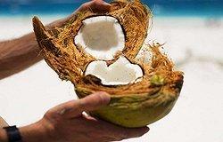 Кокосовая койра в матрасах. Свойства кокоса, кокосовое волокно, кокосовый наполнитель в матрасах