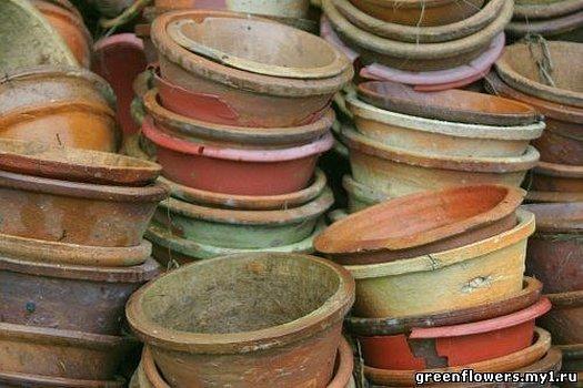 Старый глиняный горшок для цветов