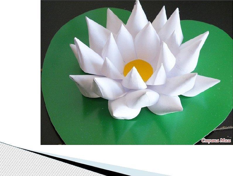 Объемная аппликация водяная лилия из бумаги