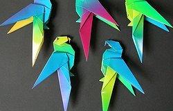 Как сделать из бумаги попугая своими руками?