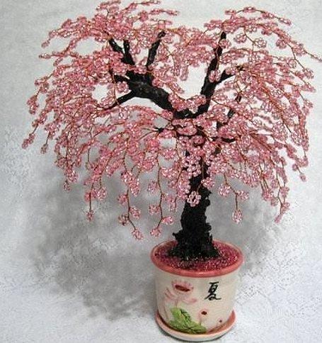 Дерево сакура само дерево