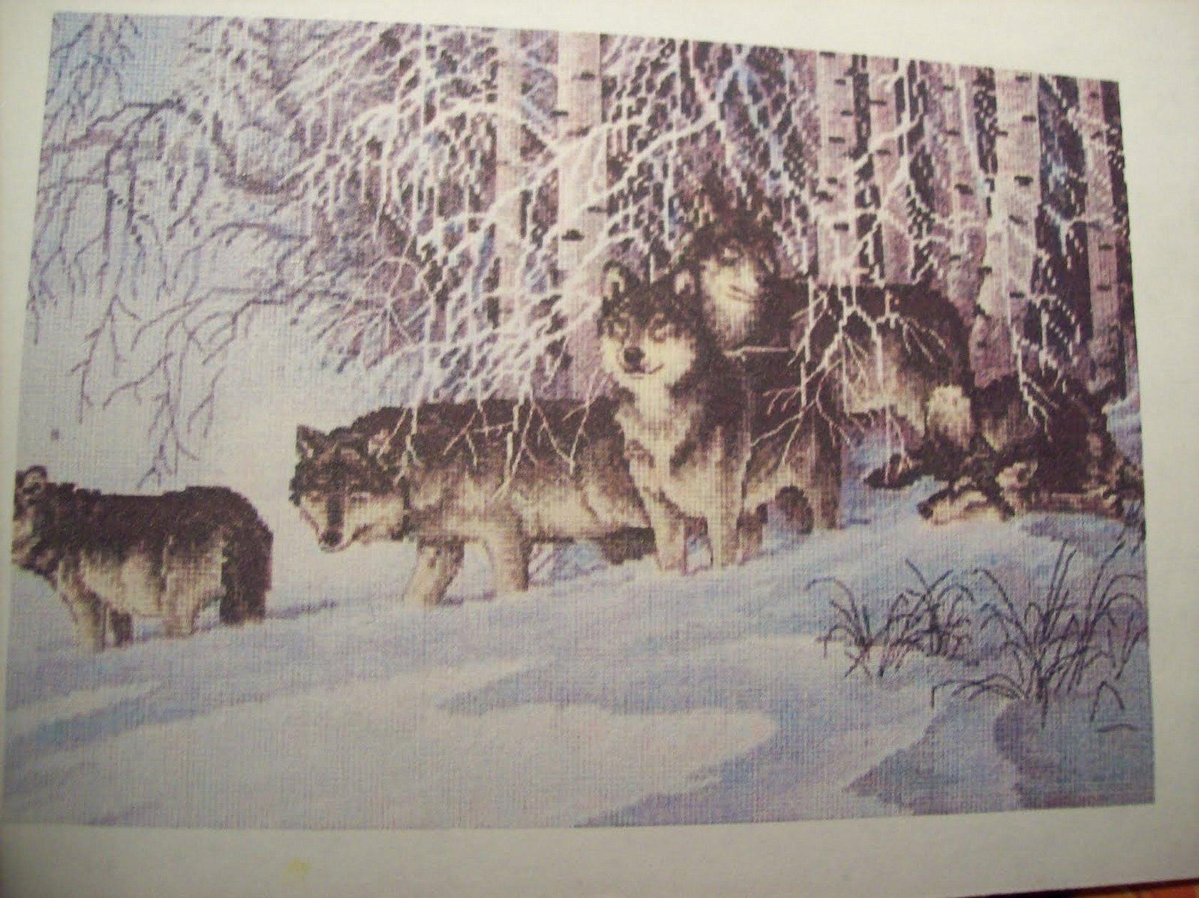 Дименшенс волки в зимнем лесу