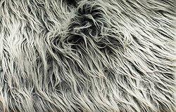 Искусственный мех: из чего делают ткань, как привести в порядок и распушить