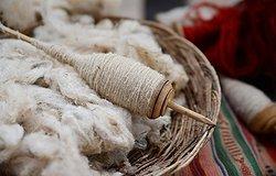 Ткань альпака: что это такое, характеристики и сферы применения
