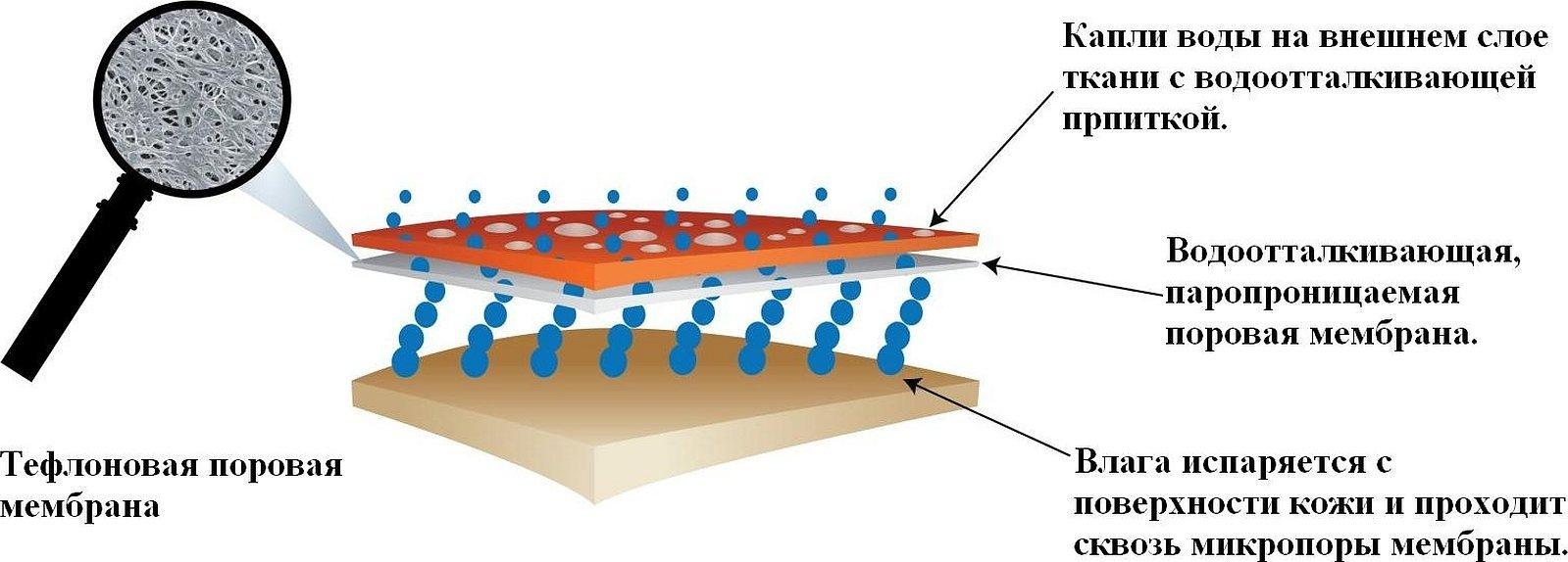 Поровая мембрана