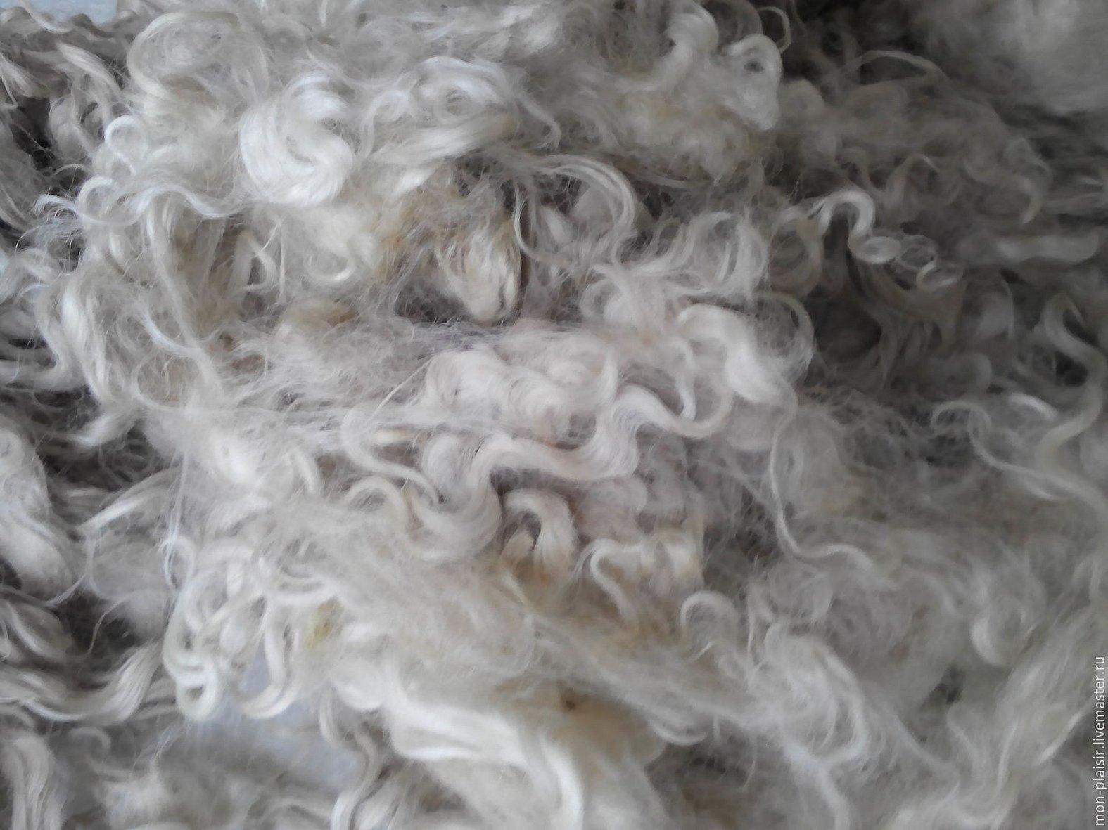 Шерсть овцы текстура